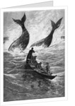 19th-Century Woodcut of Whaling by Corbis