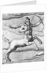 Constellation Sagittarius by Corbis