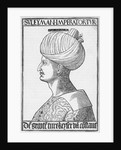 Profile Of Suleiman The Great by Corbis
