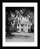 Front View Of An Antebellum Mansion by Corbis