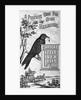 Carter's Little Liver Pills Advertisement Depicting a Crow by Corbis