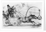 People in Horse Drawn Carriage by Corbis