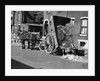 Horsedrawn Trash Cart Dumping In Street by Corbis