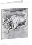 Engraving Of Taurus by Corbis