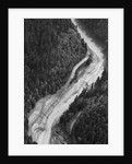 Aerial Flood Of Road Surrounded By Trees by Corbis