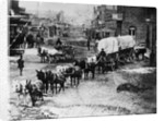 Horse Drawn Covered Wagon by Corbis