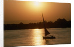 Felucca Sailing at Sunset by Corbis