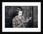 Girl Holding Pheasant Chicks by Corbis