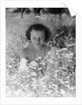 Girl in a Field of Daisies by Corbis