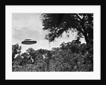 UFO Flying Low Over Trees by Corbis