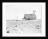 Dust Bowl Farm in Texas by Corbis
