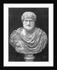 Bust Of Greek Philosopher Aristotle by Corbis