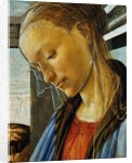 Detail of Mary from Madonna of the Eucharist by Botticelli