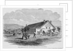Salt Lake City Tabernacle by Corbis
