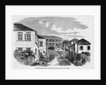Government House on St. Thomas by Corbis