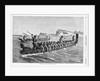 A New Zealand War Canoe Race Illustration by Corbis