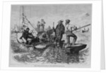 Mine Oyster - Dredging-Boats in the Chesapeake by Corbis
