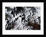 Mount Everest Seen from Shuttle Atlantis by Corbis
