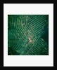 Brazilian Agricultural Fields from Space by Corbis