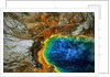 Grand Prismatic Hot Spring by Corbis