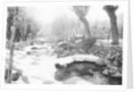 Snow Fallen Around Stream by Corbis