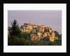 Village of Corniglia on the Italian Riviera by Corbis