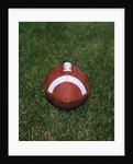 Football on the Grass by Corbis
