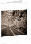 Road Winding by Cliffs by Corbis