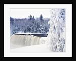 Tahquamenon Falls in Snow by Corbis