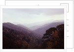 Smoky Mountains in the Mist by Corbis