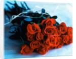 Bouquet of Roses by Corbis