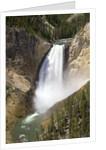 Lower Yellowstone Falls by Corbis