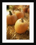 Pumpkins on Bale of Hay by Corbis