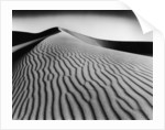 Nevada Desert Dunes by Corbis