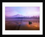 Fog Hanging Over Reflection Lake by Corbis