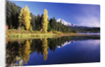 Clear Autumn Day at Trillium Lake by Corbis