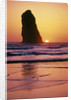 Sea Stack at Sunset by Corbis