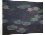 Pink Water Lilies by Claude Monet