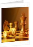 Chess Pieces by Corbis