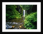 Upper Multnomah Falls by Corbis