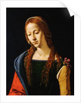 Detail Showing Upper Half of Mary Magdalene by Piero di Cosimo