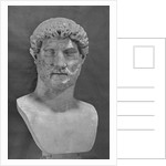 Bust of Hadrian by Corbis