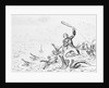 Editorial Cartoon of Horatio Nelson at the Battle of the Nile by Corbis