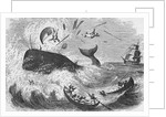 Whaling, The Flurry, Woodcut by Corbis