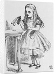 "Illustration Depicting Alice Holding the Bottle Labelled ""Drink Me"" by John Tenniel"