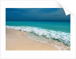 Surf and Sandy Beach by Corbis