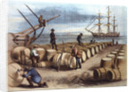 Color Print of Wharf Workers Measuring Whale Oil Content in Barrels by Corbis