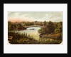 Lake and Bow Bridge in Central Park by Corbis