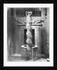 Ionic Column from Temple of Solomon by Corbis