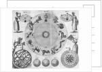 18th Century Zodiac Plan by Corbis